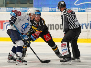 Hokejisté Plzně porazili Litvínov 2:0, skórovali Mertl a Gulaš.